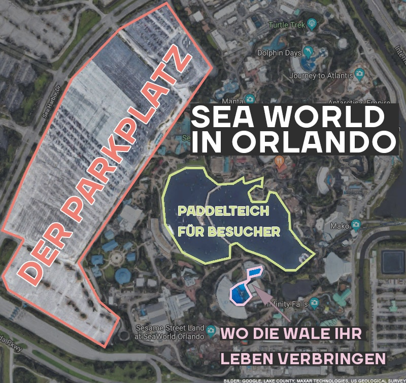 Sea World in Orlando